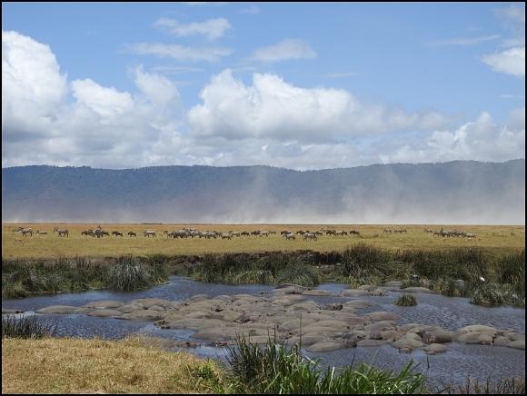 Ngorongoro Crater 4