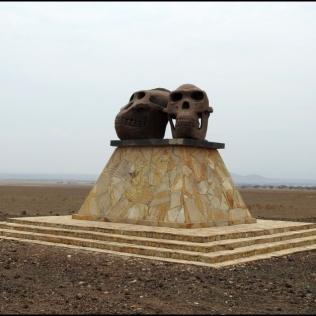 Road to Olduvai Gorge Paranthropus boisei & Homo habilis 1